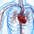 angioplastia a tronco de coronaria izquierda vs cirugia