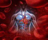 Antecedentes de enfermedad vascular periférica y reactividad plaquetaria ¿Cómo influyen en eventos cardiovasculares?