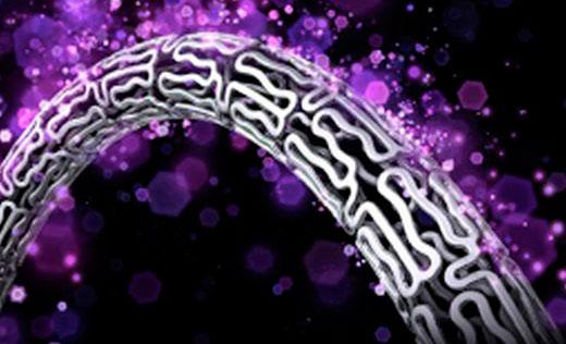 AIDA: Bioresorbable Scaffold Thrombosis Still a Concern in Studies