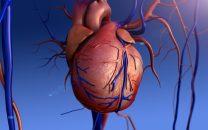 Sangrado y mortalidad en el reemplazo valvular aórtico por catéter