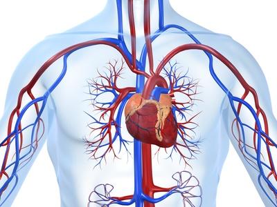Diagnóstico de espasmo coronario de manera no invasiva ¿Es recomendable?