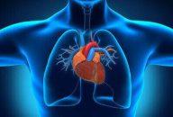Enfermedad pulmonar y TAVI, solo se beneficia un grupo reducido de pacientes
