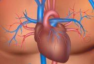Enfermedades malignas y estenosis aórtica ¿Se justifica el TAVI?