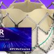 EuroPCR 2020 | Valve in Valve aórtico a largo plazo