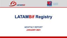 Registro LATAMBif | Reporte Enero 2021
